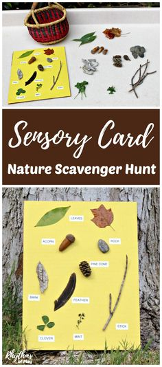 Create a nature scavenger hunt for your kids by making a nature sensory card. Using a nature sensory card makes it possible for toddlers and young children that can't read to go on a nature hunt. Alternative variations and creative learning ideas to exten Forest School Activities, Nature Activities, Outdoor Activities For Kids, Outdoor Learning, Autumn Activities, Toddler Activities, Outdoor Play, Outdoor Education, Toddler Fun