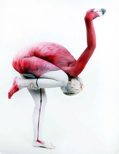 Body Painting: Art or Nudity? a view of the recent arrest of Andy Golub, a body painting artist, and his model, Karla Storie in NYC Times Square while self taught fine artist Johannes Stötter creates trompe l'oeil of animals, like this flamingo illusion, with human models.