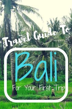 Travel Guide to Bali for your first trip
