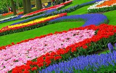 ... Garden Design : Fascinating Colorful Garden Decoration Using Colorful