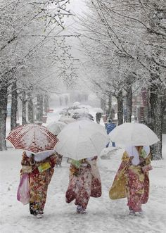 "solangenoir: "" Snow in Tokyo ~ photo Yuya Shino / Reuters Japanese women in kimonos walk during heavy snowfall at Toshimaen amusement park in Tokyo, as they attend a ceremony celebrating Coming of Age..."