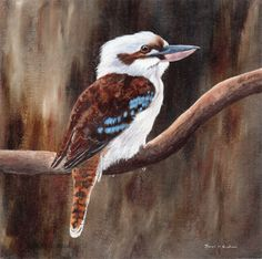 Bird Art Painting Laughing Kookaburra Wildlife SFA by ArtDownUnder Australian Animals, Australian Artists, Bird Artwork, Bird Paintings, Animal Paintings, Watercolor Canvas, Watercolour, Watercolor Paintings, Fine Art Auctions
