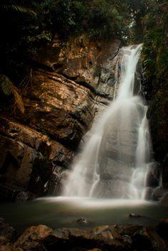 Cascada La Mina, El Yunque, PR.