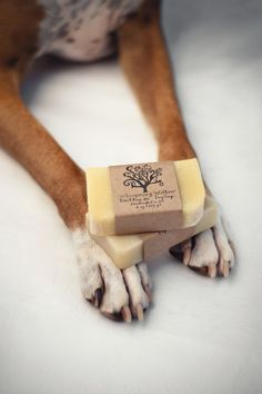 Dog Soap  Don't Bug Me All Natural Vegan by WhisperingWillowSoap, It features a mix of citronella, lemon, and rosemary - all natural bug repellents. We started selling this a bit ago at a local market and found that people loved it too.   $6.00