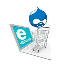 Now a day's trading of internet is hugely growing business due to many reasons such as lack of time and availability of products at cheaper cost, open the world market and free market among various countries. Conquerors design and develop a professional e-commerce website at a very affordable price. We have a comprehensive experience and expertise in developing and deploying e-commerce solutions. We also develop specialized e-commerce solutions including shopping cart solutions for clients.