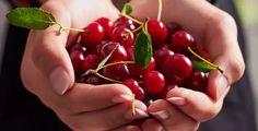 Seznam – najdu tam, co neznám Cherry, Fruit, Food, Essen, Meals, Prunus, Yemek, Eten