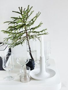 Want to see the hottest trends for holiday decor this year? Check out decor8!