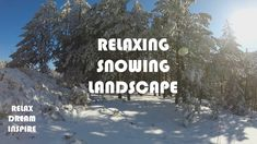 Snowy Landscape - Calm Nature Moments (HIGH QUALITY VIDEO)