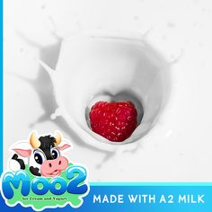 A2 beta –casein protein is recognized as being the original beta-casein protein in cows. That is, originally all domesticated cows produced milk containing only the A2 protein.  #A2 #a2Milk #Milk #IceCream #Yogurt #Dessert