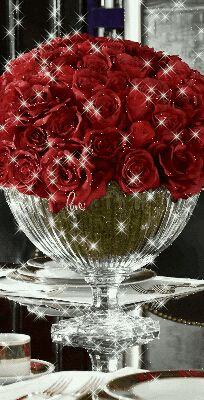 Beautiful Flowers Images, Beautiful Bouquet Of Flowers, Beautiful Flowers Wallpapers, Beautiful Gif, Flower Images, Beautiful Roses, Wallpaper Nature Flowers, Rose Flower Wallpaper, Beautiful Landscape Wallpaper
