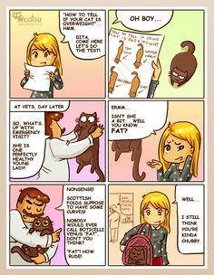 Catsu The Cat (best of dump) Funny Cat Jokes, Cat Memes, Funny Cats, Funny Animals, Cute Animals, Crazy Cat Lady, Crazy Cats, Catsu The Cat, Simons Cat