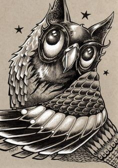 Decorative Inked Owl by Bryan Collins. Prints available at http://www.bryancollins.etsy.com