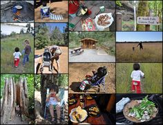 Home Grown Montessori: The Adventures of Camping with Kids