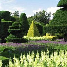 Terapiasmanuales: La topiaria: Arte crear auténticas esculturas a partir de la vegetación.