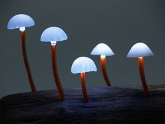 """LED Mushroom Lights LED Mushroom Lights, dubbed """"The Great Mushrooming"""", is designed by Japanese designer Yukio Takano. The LED lamps illuminates powered by batteries, which are embedded in the base of the wood. The lamps comes in various unnatural colors Glowing Mushrooms, Wild Mushrooms, Stuffed Mushrooms, Light Luz, Led Shop, Mushroom Lights, Deco Led, Led Stripes, Colossal Art"""