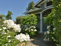 House vacation rental in Yountville from VRBO.com! #vacation #rental #travel #vrbo