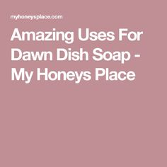 Amazing Uses For Dawn Dish Soap - My Honeys Place