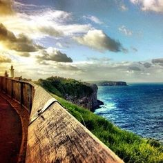 Christison Park to Inner South Head walk. | 26 Walks Everyone In Sydney Needs To Add To Their Bucket List