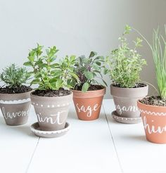 10 Tiny Herb Garden Ideas That Will Fit in Any Apartment via Brit + Co. 10 Tiny Herb Garden Ideas That Will Fit in Any Apartment via Brit + Co. Our creative family gCreate herbal bed: Charming Indoor Herb G Herb Planters, Planter Pots, Herb Pots, Indoor Planters, Planter Ideas, Organic Gardening, Gardening Tips, Vegetable Gardening, Kitchen Gardening