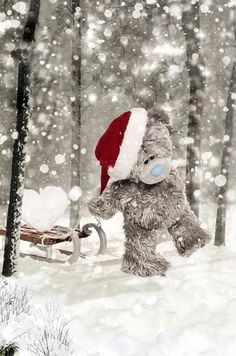 ♥ Tatty Teddy ♥ Tatty Teddy, Steiff Teddy Bear, Teddy Bears, Teddy Images, Teddy Pictures, Bear Pictures, Christmas Pictures, Winter Christmas, Christmas Crafts