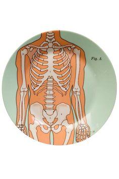 Anatomical Plate Set - main