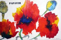 mr marian hergouth, papaver on Japan paper Japan, Artist, Paintings, Paper, Canvas, Drawing S, Cards, Okinawa Japan, Paint