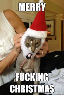 Merry Christmas Memes.7 Best Merry Christmas Meme Images In 2019 Merry Christmas