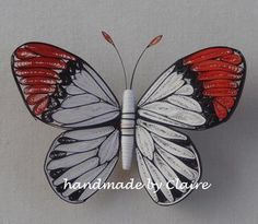 quilled butterflies - hemaartandcraft - Picasa Web Albums