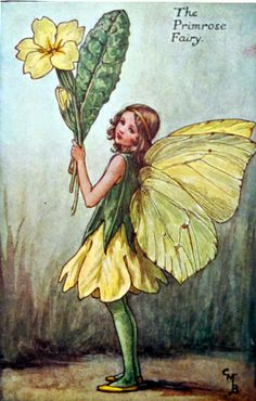 Primrose Fairy from Cecily Mary Barker's Book of the Flower Fairies