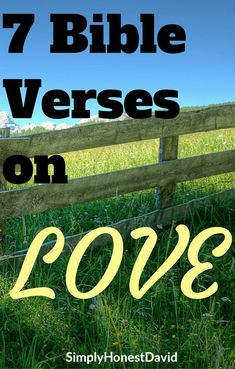 These are 7 of my favorite Bible verses on LOVE. What does the Bible say? Bible Studies For Beginners, Reading For Beginners, Bible Study Plans, Bible Study Tips, Bible Verses About Fear, Scriptures, Message Bible, Christian Devotions, Favorite Bible Verses