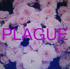 cover art for 'plague' by Crystal Castles.