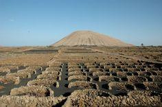 Resultados de la Búsqueda de imágenes de Google de http://www.allcaravan.es/images/stories/fotos-web/Islas_Canarias/Lanzarote/lanzarote%2520-cultivos%2520de%2520vino.jpg