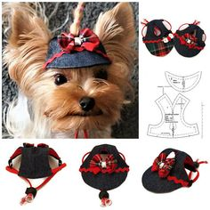 Dog outfit hat, Yorkie clothes, Pet hat PDF, Small dog hat pattern for dog pdf, Dog hat sewing pdf, Dog outfit ,Hat for dog pdf, size XS, Small dog, Language English Size XS - Measurements, Dimensions no. 2 photo This listing included 1 PDF: 1 PDF - 1 Pattern page (1A) + 4 pages