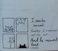'I can be social. Today I meowed at my cat and he meowed back' #quote #bulletjournal #handlettering