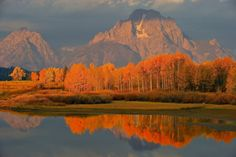 Travel | Wyoming | Fall | Nature | Landscape | Scenic | Places
