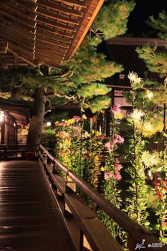 Love this walk around porch with all the greenery and lights at night, Japan