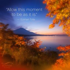 """Allow this moment to be as it is."" - Eckhart Tolle"