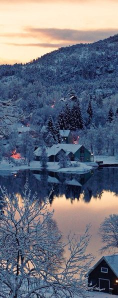 Cabin on the Lake in Winter