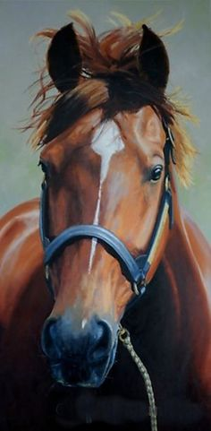 Secretariat by Lyn Beaumont Most Beautiful Animals, Beautiful Horses, Horse Girl, Horse Love, The Great Race, All About Horses, Majestic Horse, Thoroughbred Horse, Racehorse