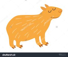 Image result for cute wombat vector