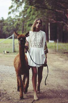 Carly Zinga with an alpaca