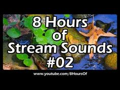 8 Hours of relaxing stream sounds. You can hear the sound of a natural water stream in a forest. The sound of water will help you to relax very quickly.  If you listen to this during sleep or meditation you will feel peaceful and calm. Great for relaxation, tinnitus, meditation, yoga, when you study etc.  Please like, subscribe and comment if you enjoyed this video. It will really help me out a lot. :)  http://www.youtube.com/subscription_center?add_user=8hoursof