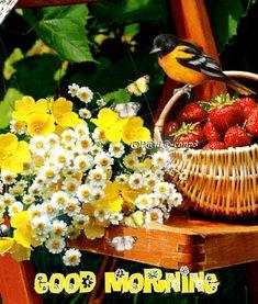 Cute Good Morning Images, Good Morning Texts, Good Morning Coffee, Good Morning World, Good Morning Picture, Good Morning Good Night, Morning Pictures, Good Morning Wishes, Good Morning Quotes
