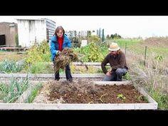 Préparation du potager pour le printemps prochain. - YouTube