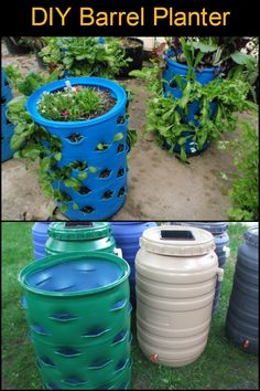 When recycling meets gardening...