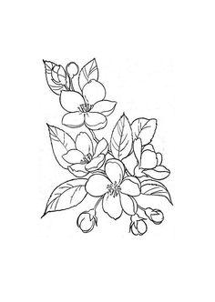 Flores - Make-up Flower Line Drawings, Flower Sketches, Art Drawings Sketches, Tattoo Drawings, Doodle Drawings, Sketch Art, Hawthorne Flower, Floral Drawing, Flower Design Drawing