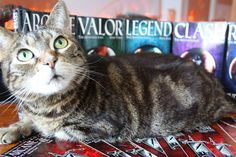 My cat and my published works. The Arinthian Line series #fantasy #epic #adventure #youngadult #book #paperback #ya #ebook #cat #aww https://www.amazon.com/dp/B00Q5M78KW
