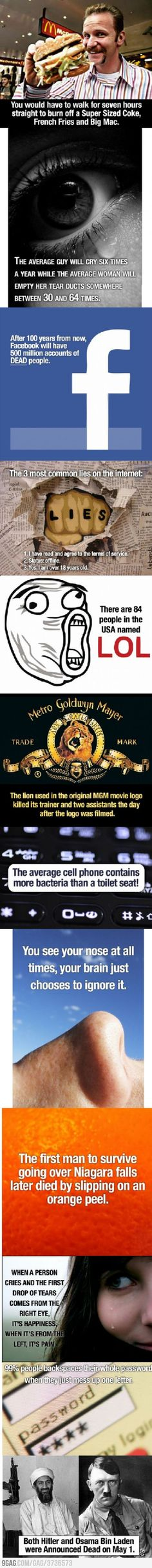 Interesting about the lion... (and they guy who died slipping on an orange peel. Can that be true...?)