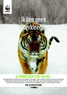 Deze tijger heeft geen stem, jij wel! Wil jij de indrukwekkende filmpjes van de Wildlife crime campagne zien? Klik op de pin! Animal Species, Tigers, Baby Animals, Crime, Wildlife, Lifestyle, Anatomy, Baby Pets, Crime Comics
