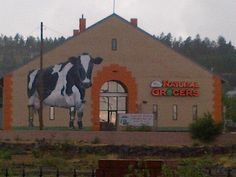 Natural Grocers by Vitamin Cottage - Flagstaff, Arizona